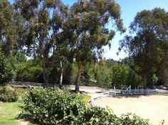 Horse property just off Palos Verdes Drive Norrth
