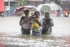 nice Photos: Devastating monsoon rains affect 41 million people in South Asia Monsoon Rain, My World, Nepal, Cool Photos, Asia, People, Storms, Rain, Thunderstorms