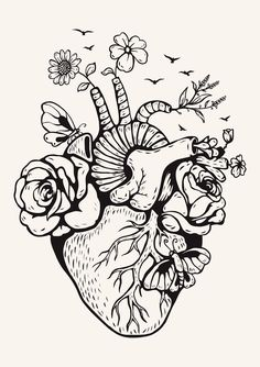 Illustration anatomical heart with mushrooms Premium Vector Cool Art Drawings, Pencil Art Drawings, Art Drawings Sketches, Tattoo Drawings, Heart Drawings, Cute Drawing Images, Ink Tattoos, Abstract Drawings, Human Heart Drawing