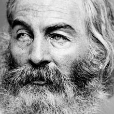Brainpickings - Awake my soul -Mumford and sons and Walt Whitman -Leaves of Grass - Love the earth and sun and the animals, despise riches, give alms to every one that asks, stand up for the stupid and crazy, devote your income and labor to others, ......