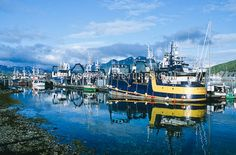 Houses in Unalaska, AK.  | Fishing boats docked at the busy fishing port in the Aleutian Islands