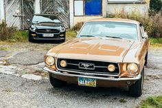 Ford Mustang GT 5.0 (2015, 441 PS) und Ford Mustang GT 390 Fastback (1967, 290 PS)