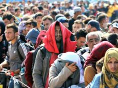 Germany Knows Who These 'Refugees' ARE but wants US to Embrace MuslimTrojan Horse! NWO Taking a Goose Step Forward!