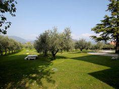 Apartment Olea Dei – San Felice del Benaco for information: Gardalake.com