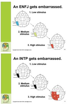 plumbingthedepths: Based on EEG scans showing the INTP is oblivious to social appropriateness until the stimulus reaches a certain threshold. Then s/he gets extremely embarrassed all at once. By contrast the ENFJ shows a nice linear increase in embarrassment as the stimulus increases. via Dario Nardi, UCLA