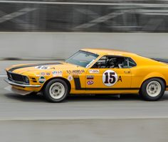 1970 Boss 302 Mustang Tans Am Racer. The World's Fastest, Loudest Museum of Vintage Race Cars Mustang Boss 302, Mustang Cobra, Ford Mustang Shelby, Ford Mustangs, Sport Cars, Race Cars, Drag Racing, Auto Racing, Classy Cars