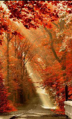 光芒-13.jpg 700×1.162 pixels
