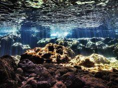 Stunning under water world #sea