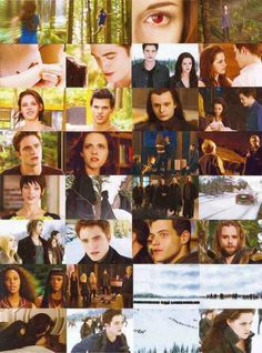 """Breaking Dawn Part 2"" :)"