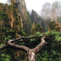 Yellow Mountain in clouds, Huangshan, China [OC] [3024x3024]