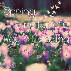 #spring #party #nature #flower #purple #pink #quotes