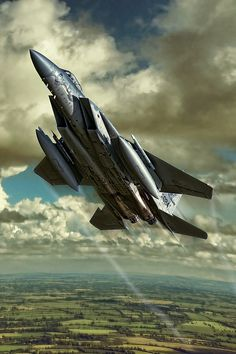 Digital Art - Eagle Mission by Peter Scheelen Air Force Fighter Jets, Air Fighter, Best Fighter Jet, Military Jets, Military Aircraft, Subaru, F22 Raptor, Birds In The Sky, Airplane Art
