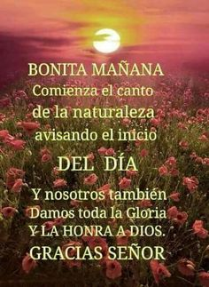dios-te-bendiga-buenas-tardes-especiales (4) - IMAGENES GRATIS Good Morning Prayer, Morning Blessings, Morning Prayers, Morning Wish, Night Messages, Good Morning Messages, Good Morning Quotes, Wish In Spanish, Good Morning In Spanish