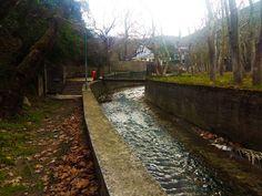 Αν βρεθείτε στην Κύμη, τότε μια βόλτα από την Ιαματική Πηγή, στο Χωνευτικό είναι απαραίτητη! Τόσο για την ομορφιά του τοπίου όσο και...