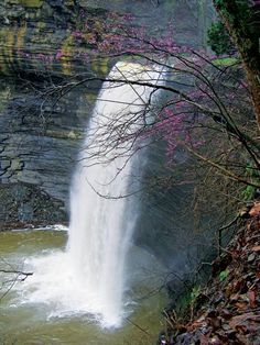 Seventy-Six Falls is one of the most visited places on Lake Cumberland for houseboaters. Seventy-Six Falls can be viewed by land as well. The beautiful picnic area at the top of the falls is a perfect spot for gatherings of any kind, including weddings. It is located in Clinton Co., KY between the towns of Burkesville & Monticello on Highway 90; turn north onto Seventy-Six Falls Road; travel 3 miles to the Seventy-Six Falls Park