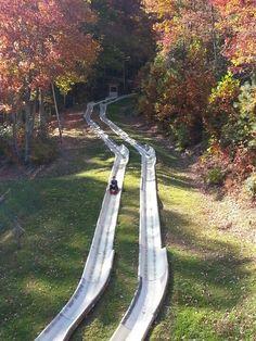 Ober Gatlinburg Alpine Slide.... gorgeous scenic chairlift up & racing fun on the way down! Gatlinburg, TN