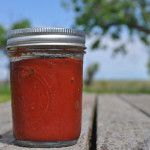 Kombucha Tea Recipe  Collection of 50 Flavor recipes --- Kombucha Ketchup PickleMeToo.com