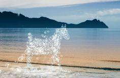 Nieuw in mijn Werk aan de Muur shop: Een paard van waterdruppels nr. 2