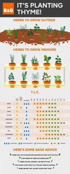 Sage advice in herb care: plan your grown-at-home salads in advance with this ha. - Pflanzen - Sage advice in herb care: plan your grown-at-home salads in advance with this handy herb chart that - Growing Herbs Indoors, Growing Plants, Gardening Supplies, Gardening Tips, Organic Gardening, Balcony Gardening, Balcony Herb Gardens, Urban Gardening, Herb Garden Planter