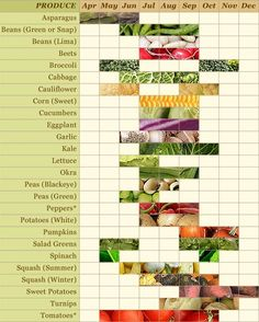 @Katie Logue – saw your pin about seasonal food. Here's one about what grows each month in Maryland (and is probably true for surrounding states).