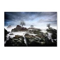 "Trademark Art ""And Then.."" by Philippe Sainte-Laudy Photographic Print on Wrapped Canvas Size: 30"" H x 47"" W x 2"" D"