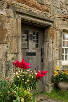 Flowers at my door - St Andrews