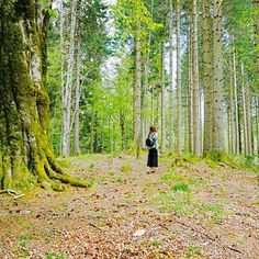 【travel.miri】さんのInstagramをピンしています。 《Wenn ich in die Natur gehe, fühle ich mich, dass die Natur wirklich sehr groß ist. . 當我踏進大自然裡,覺得自己真的很苗小》