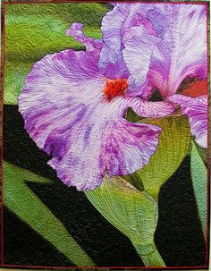 This photo-transfer quilt is called Squid Squirt. I took the photo of an iris in our backyard by the same name. 23x30
