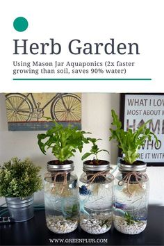 nice 3 Mason Jar Aquaponics Kit - Organic, Sustainable, Fish Hydroponics Herb Garden (WITHOUT JARS) Shocker! How To Launch Your Own Woodworking Business For Under .