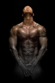 BUGGYS BOOK BLOG: ~REVIEW of J.R Ward's: THE BLACK DAGGER BROTHERHOOD: AN INSIDER'S GUIDE~