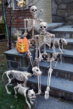 """The """"Bones"""" family poses for a family photo on our front steps!"""