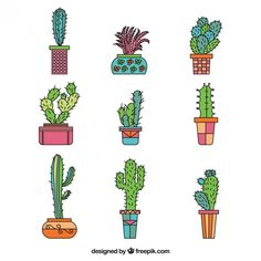 Recolha de mão desenhada cactus Vetor grátis
