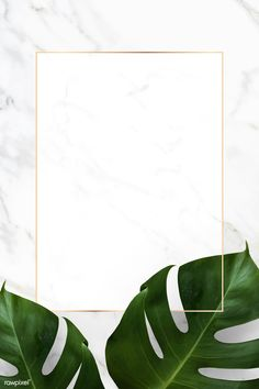 Rectangle golden frame on a marble background vector premium image by Adj HwangMangjoo marinemynt