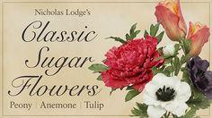 gumpaste anemone tutorial, tulip tutorial and peony tutorial by Nicholas Lodge on Craftsy