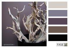 #FASE13 Kleurinspiratie voor je interieur! ~ ghostwood hues