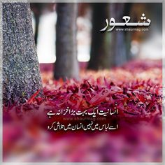 Image may contain: text, outdoor and nature Love Quotes In Urdu, Urdu Quotes, Poetry Quotes, Quotations, Qoutes, Urdu Funny Poetry, Best Urdu Poetry Images, Urdu Thoughts, Deep Thoughts