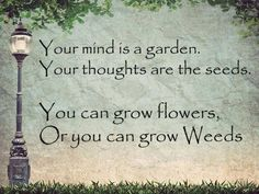 Good Thoughts, Positive Thoughts, Cool Words, Wise Words, Book Quotes, Me Quotes, Garden Quotes, Garden Sayings, Growing Flowers