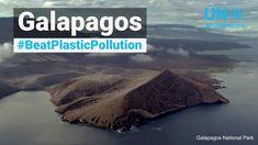 Galapagos #BeatPlasticPollution