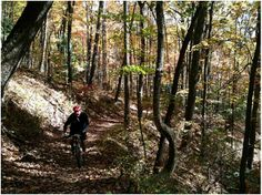 Mountain biking North Carolina