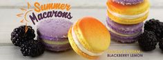 Summer Macarons at Sucre New Orleans