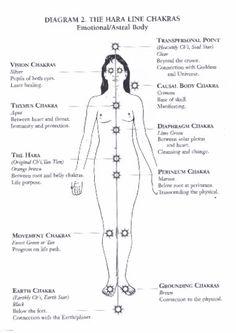 The Hara Line Chakras - Reiki Heidi: Reiki Healing in Norwich Chakra Meditation, Chakra Healing, Les Chakras, Mudras, Chakra System, Spirit Science, Reiki Energy, Mind Body Spirit, Crystals