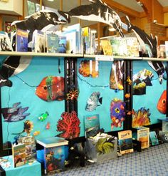 where in the world library display | ... the beauty of our underwater world the main attraction for citizens
