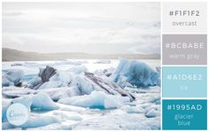 Icy Blues and grays - Color makes a design come alive.
