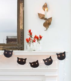 Bright Black Cats
