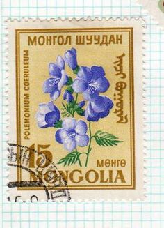 old mongolian stamp