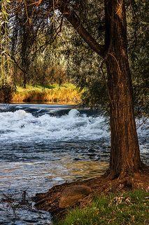 River Jordan in Israel.