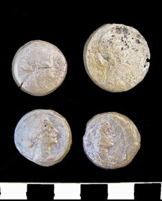 """Coins found in the Temple of Taposiris Magna. These are thought to be of Cleopatra VII.  Photo: Supreme Council of Antiquities  Further information:  Press Release - News from the Temple of Taposiris Magna Location Egypt 30° 34' 12"""" N, 29° 18' 36"""" E"""