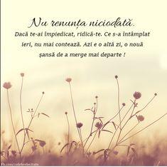 Love You, Happy, Plants, Movie Posters, Happiness, Motivational Quotes, Te Amo, Je T'aime, Bonheur
