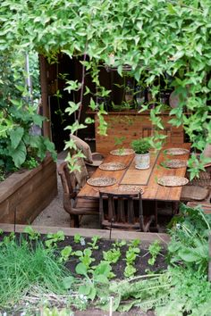 outdoor dining room, herb garden, ivy...