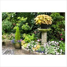 suburban garden...